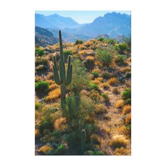 Los E.E.U.U., Arizona. Opinión del desierto Impresiones En Lona Estiradas