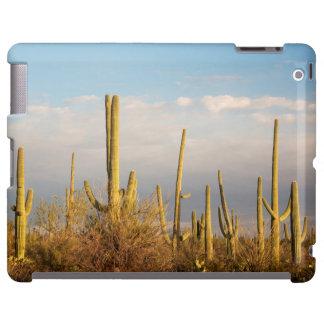 Los E.E.U.U., Arizona, parque nacional de Saguaro, Funda Para iPad