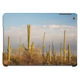 Los E.E.U.U., Arizona, parque nacional de Saguaro, Funda Para iPad Air