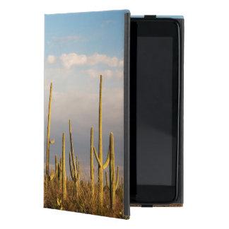 Los E.E.U.U., Arizona, parque nacional de Saguaro, iPad Mini Carcasa