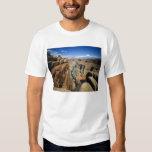 Los E.E.U.U., Arizona, parque nacional del Gran Poleras