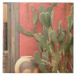 Los E.E.U.U., Arizona, Tucson: Distrito histórico  Azulejo Cuadrado Grande