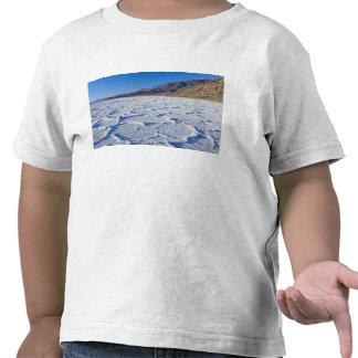 Los E E U U CA Death Valley NP formaciones de Camiseta