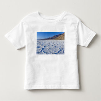 Los E.E.U.U., CA, Death Valley NP, formaciones de Remera
