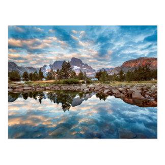 Los E.E.U.U., California, bosque del Estado 15 de Tarjetas Postales
