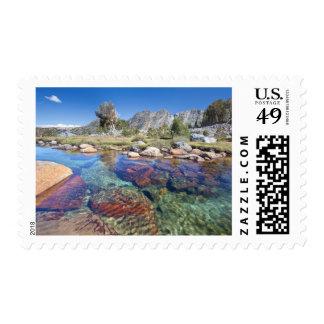 Los E.E.U.U., California, bosque del Estado 4 de Timbres Postales