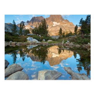 Los E.E.U.U., California, bosque del Estado 5 de Postal