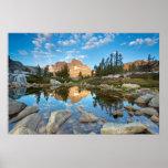 Los E.E.U.U., California, bosque del Estado de Posters