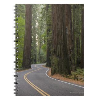Los E.E.U.U., California, camino a través del Libreta