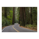 Los E.E.U.U., California, camino a través del Tarjeta De Felicitación