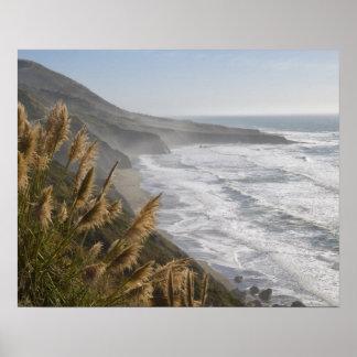 Los E.E.U.U., California, costa de Mendocino Impresiones