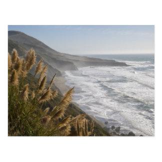 Los E.E.U.U., California, costa de Mendocino Postal
