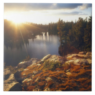 Los E.E.U.U., California, montañas de Sierra Nevad Azulejo Cuadrado Grande