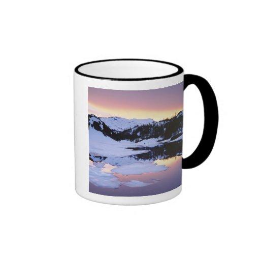 Los E.E.U.U., California, montañas de Sierra Nevad Taza De Café