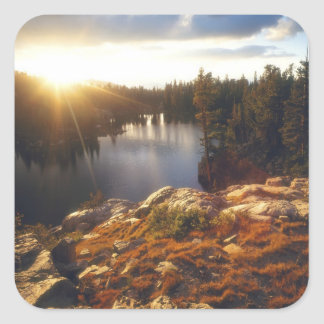 Los E.E.U.U., California, montañas de Sierra Pegatina Cuadrada