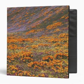 "Los E.E.U.U., California, montañas de Tehachapi, 2 Carpeta 1 1/2"""