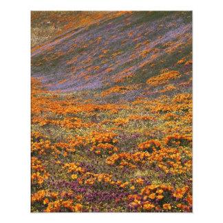 Los E.E.U.U., California, montañas de Tehachapi, 2 Fotografías