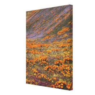 Los E.E.U.U., California, montañas de Tehachapi, 2 Impresiones En Lienzo Estiradas