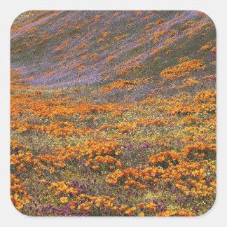 Los E.E.U.U., California, montañas de Tehachapi, 2 Pegatina Cuadrada