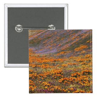 Los E.E.U.U., California, montañas de Tehachapi, 2 Pins