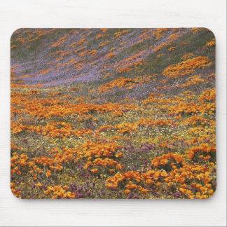 Los E.E.U.U., California, montañas de Tehachapi, 2 Tapete De Ratones