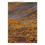 Los E.E.U.U., California, montañas de Tehachapi, 2 Tarjeta De Felicitación