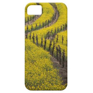 Los E.E.U.U., California, Napa Valley, Los Carnero iPhone 5 Case-Mate Coberturas