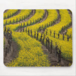 Los E.E.U.U., California, Napa Valley, Los Carnero Mousepad