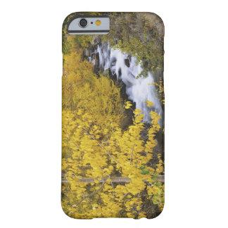 Los E.E.U.U., California. Obispo Creek y árboles Funda Para iPhone 6 Barely There