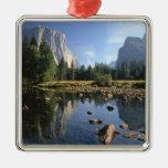Los E.E.U.U., California, parque nacional de Adorno Cuadrado Plateado