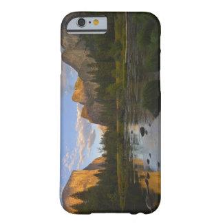 Los E.E.U.U., California, parque nacional de Funda Para iPhone 6 Barely There