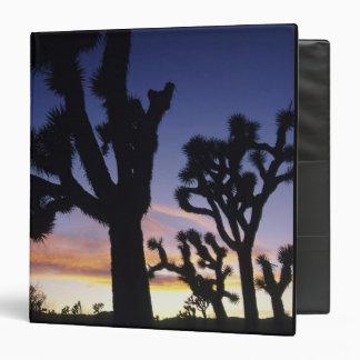 "Los E.E.U.U., California, parque nacional de la Carpeta 1 1/2"""