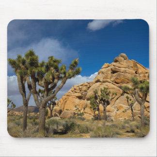 Los E.E.U.U., California, parque nacional de la Alfombrilla De Ratones