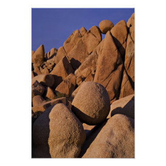 Los E.E.U.U., California, parque nacional de la yu Póster