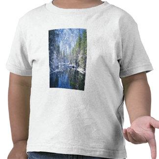 Los E.E.U.U., California, parque nacional de Camiseta
