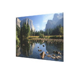 Los E.E.U.U., California, parque nacional de Yosem Impresión En Lona Estirada