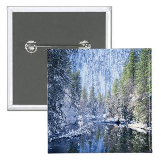Los E.E.U.U., California, parque nacional de Yosem Pin