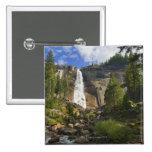 Los E.E.U.U., California, parque nacional de Yosem Pins