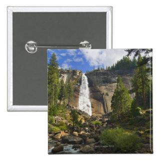 Los E E U U California parque nacional de Yosem Pins