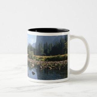Los E.E.U.U., California, parque nacional de Yosem Tazas De Café