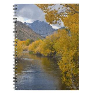 Los E.E.U.U., California, río con Sierra del este Cuadernos