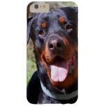 Los E.E.U.U., California. Rottweiler por un árbol Funda De iPhone 6 Plus Barely There