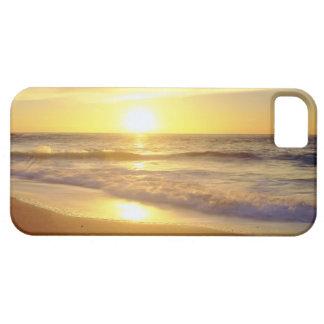 Los E.E.U.U., California, San Diego. Orillas de La Funda Para iPhone SE/5/5s
