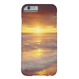 Los E.E.U.U., California, San Diego. Playa de los Funda Barely There iPhone 6