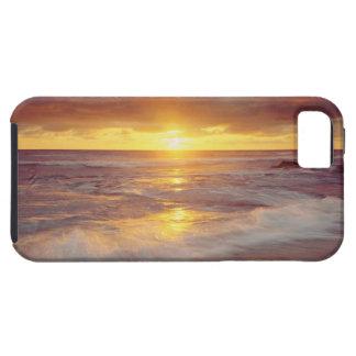 Los E.E.U.U., California, San Diego. Playa de los Funda Para iPhone SE/5/5s