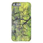 Los E.E.U.U., California, San Diego. Un bosque Funda Para iPhone 6 Barely There