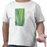Los E.E.U.U., California, San Fracisco, Golden Gat Camisetas