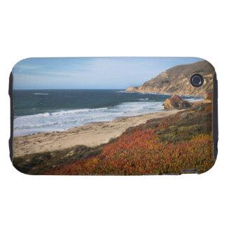 Los E.E.U.U., California, Sur grande, plantas iPhone 3 Tough Carcasa