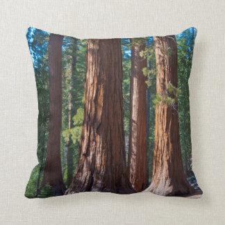 Los E.E.U.U., California. Troncos de árbol de la Almohada