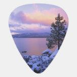 Los E.E.U.U., California. Un día de invierno en el Uñeta De Guitarra